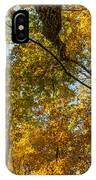 Fall Tree Tops IPhone Case