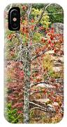 Fall Tree With Intense Colors IPhone Case