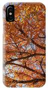 Fall Tree With Star Burst IPhone Case