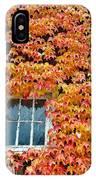 Fall Window IPhone Case