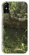 Fallen Tree In Peters Canyon IPhone Case