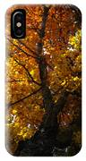 Falling Light IPhone Case