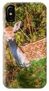 Fallow Deer 2 IPhone Case
