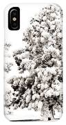 Family Of Trees IPhone Case