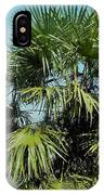 Fan Palm Tree IPhone Case