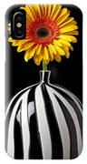 Fancy Daisy In Stripped Vase  IPhone Case