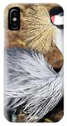 Fancy Feathers IPhone Case