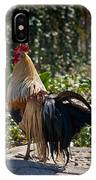 Fancy Rooster IPhone Case