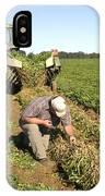 Farmer Inspects Peanut Field IPhone Case