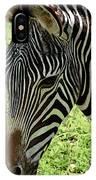 Fascinated IPhone Case