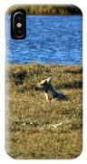 Fawn Caribou IPhone Case
