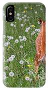 Fawn Memories IPhone Case