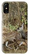 Fawns Running IPhone Case