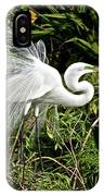 Beautiful Feathers And Foliage IPhone Case