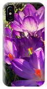 February Crocus IPhone Case