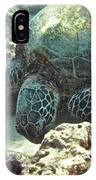 Feeding Sea Turtle IPhone Case