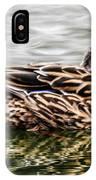Female Mallard Duck IPhone Case