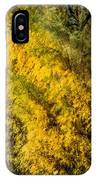 Fens In Fall Color IPhone Case
