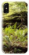 Fern Valley IPhone Case
