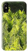 Fernery IPhone Case