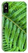 Ferns After A Spring Rain IPhone Case