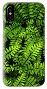 Ferns After The Rain IPhone Case