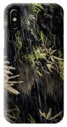 Ferns Below Falls By Jean Noren IPhone Case
