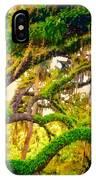 Ferns On Florida Oaks IPhone Case