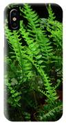 Ferns On The West Virginia At IPhone Case