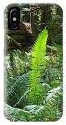 Ferns Sunlit Redwood Forest Fern Giclee Art Prints Baslee Troutman IPhone Case