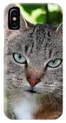 Ferocious Cat IPhone Case
