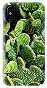 Field Of Cactus Paddles IPhone Case