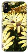 Field Of Daisies Landscape Floral Art Prints Daisy Baslee Troutman IPhone Case