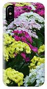 Field Of Kalanchoe IPhone Case