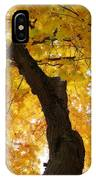 Fields Of Gold Above Our Heads IPhone Case