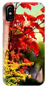 Fiery Red Autumn IPhone Case