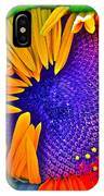 Fiesta IPhone Case