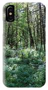 Filtered Forest Sunlight In Oregon IPhone Case