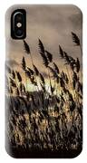 Filtered Light IPhone Case
