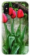 Fine Wine Cafe Red Tulips IPhone Case