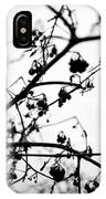 Fineart-nature-4 IPhone Case