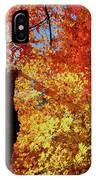 Fall Fire IPhone Case