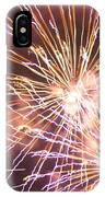 Fireworks In The Park 3 IPhone Case