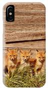 Five Fox Kits By Old Saskatchewan Granary IPhone Case