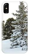 Flag And Snowy Pines IPhone Case