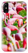 Flamingo 6 IPhone Case