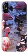 Flamingo Family  IPhone Case