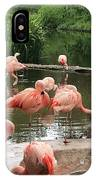 Flamingoes Looking Oh So Pretty  IPhone Case