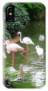 Flamingos 4 IPhone Case