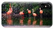 Flamingos II IPhone Case